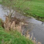 19th February 2017 River Clearing – Beat 8 : Moone Bridge